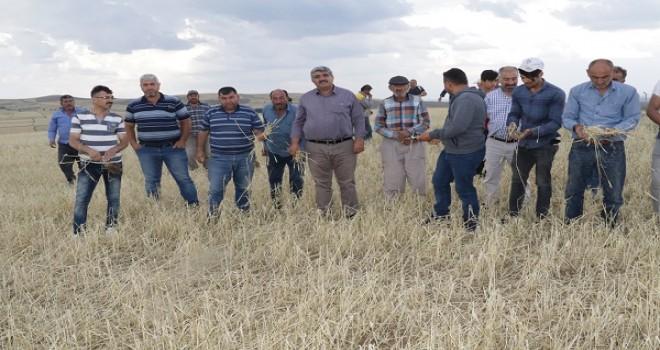 Yozgatlı çiftçiler yardım bekliyor