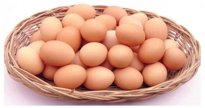 Yumurta üretimi yüzde 1,9 düştü