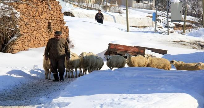 1,5 metreye ulaşan kar köylülerin günlük yaşamını olumsuz etkiledi