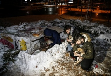 Köpek yavrularını donmaktan mahalleli kurtardı